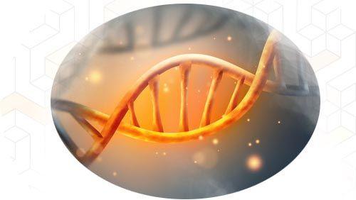 curso-liberación-genética