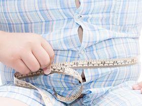 curso intensivo kinesiologia nutricional y sobrepeso