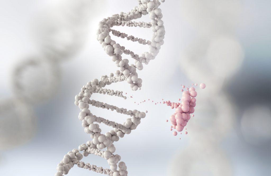 Máster en Liberación Genética